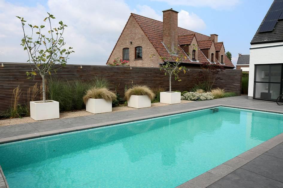 Eco tuinarchitectengroep projecten tuin met zwembad en for Afmetingen zwembad tuin